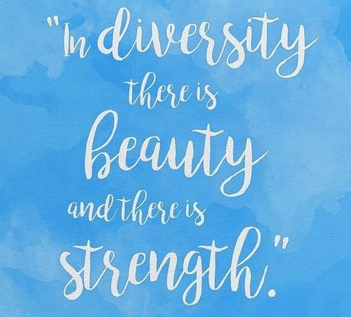 diversity_quotes6