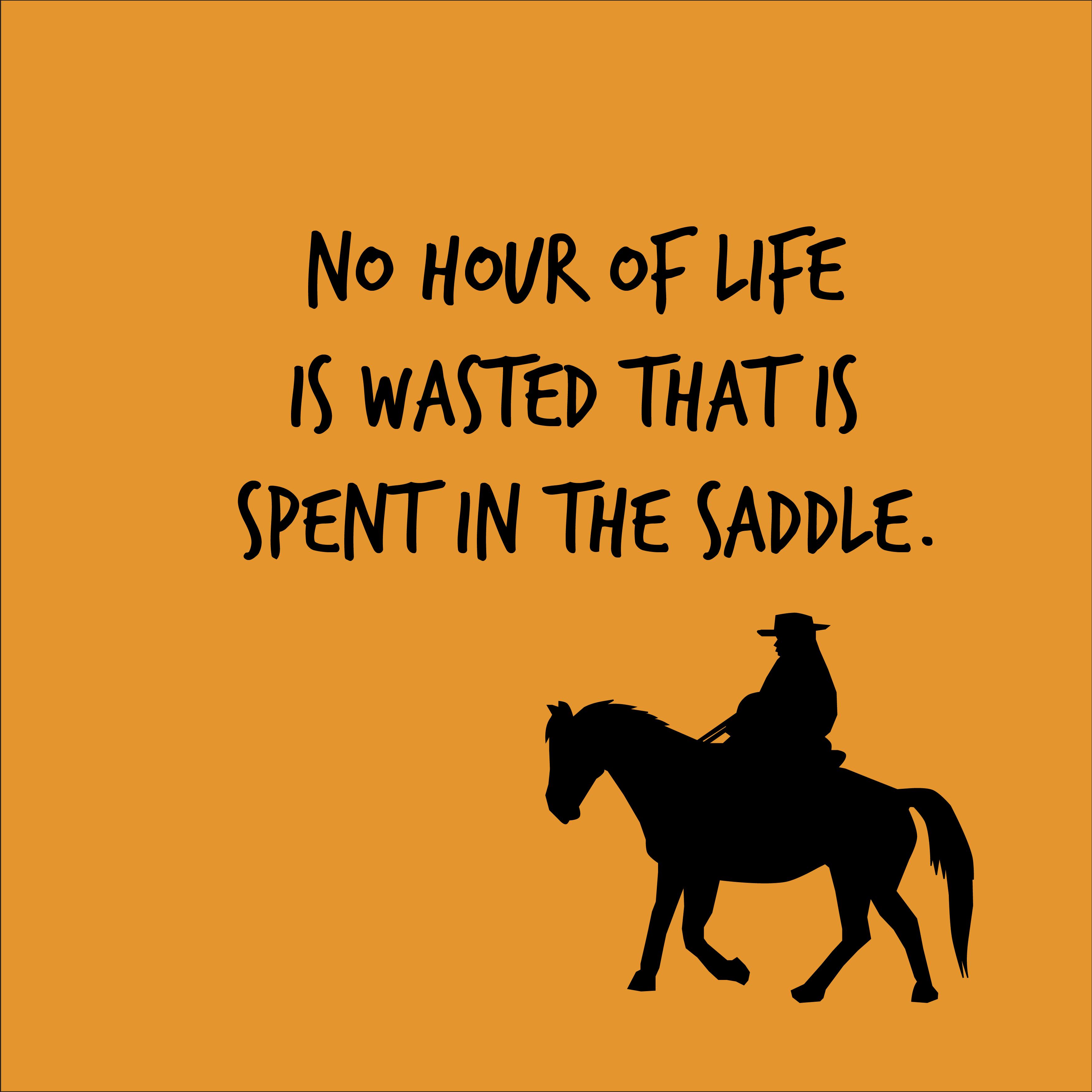 cowboy-quotes-01